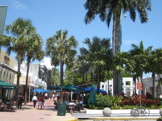 Pizza South Beach Miami Beach Fl