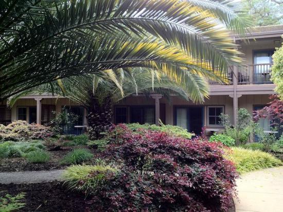 El Pueblo Inn: Garden