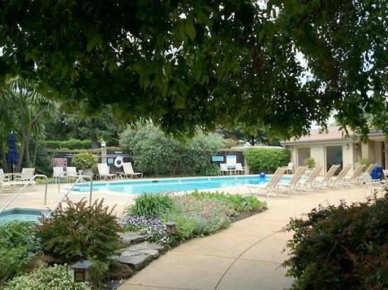 إل بويبلو إن: Pool