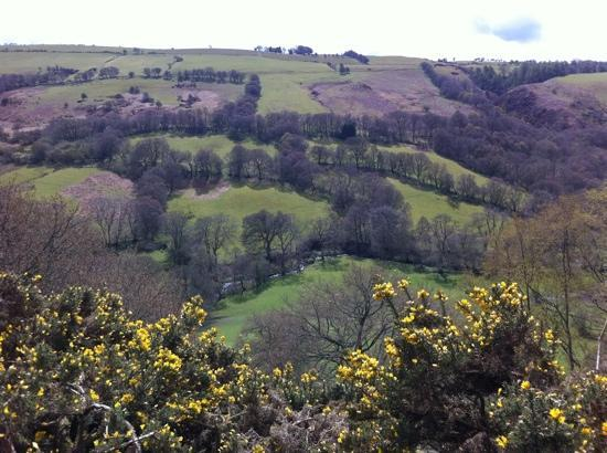 The Old Rectory Bed & Breakfast: Nearby views