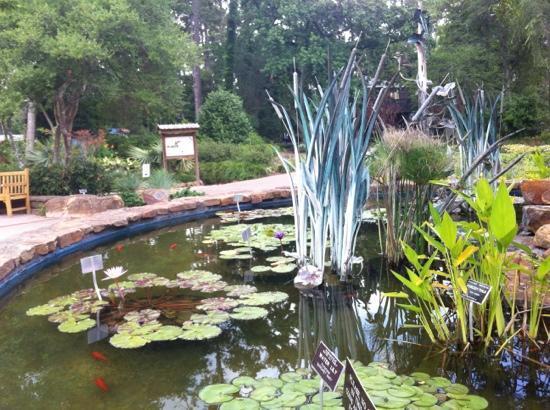 Admiring The Blue Bonnets Picture Of Mercer Arboretum Botanic Gardens Humble Tripadvisor