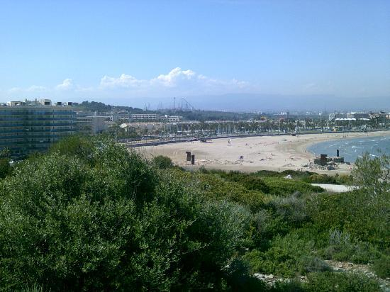 Golden Donaire Beach Hotel : it's on the beach