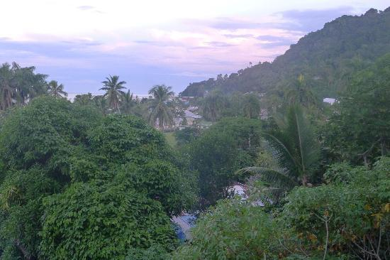 Levuka Homestay : View from the terrace