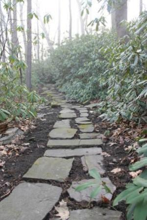 Stony Point Bed & Breakfast: Path in the rhododendrons in front of house.