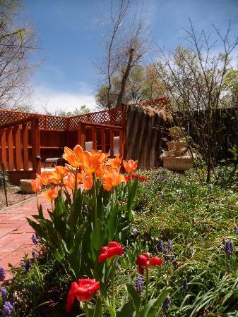 Dreamcatcher Bed & Breakfast: Garden in bloom with the earely Spring
