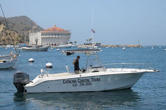 Catalina Coastal Tours: The C-Star