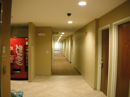 Microtel Inn & Suites by Wyndham Pearl River/Slidell: third floor hallway