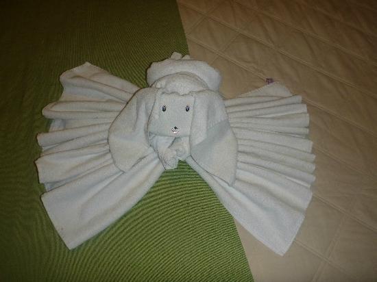 Hotel Playa del Karma : towel dog