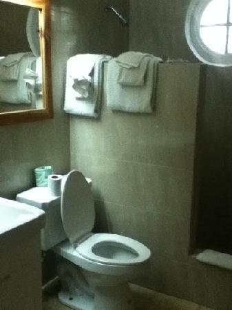 Negril Palms Hotel: Bathroom was very clean. Towels were provided everyday with no problem. only problem the shower