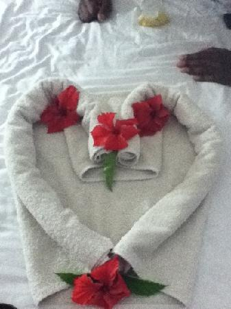 Negril Palms Hotel: There were some kind of decor with flowers on the bed everyday..it's was lovely