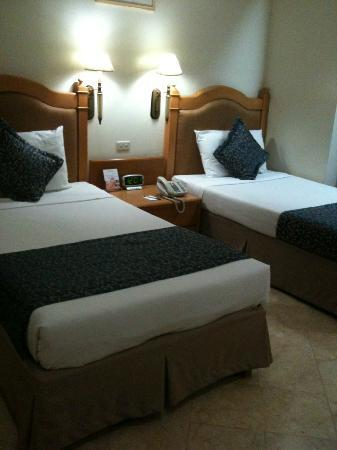 Palm Plaza Hotel: Room 214 has two comfortable single beds