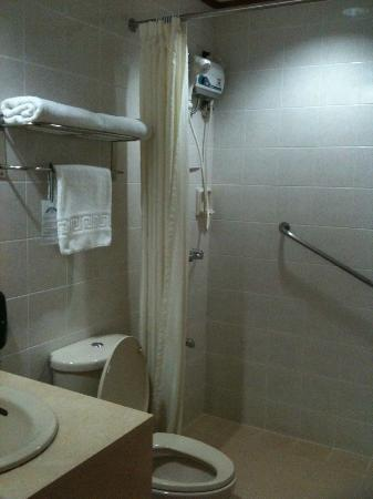 Palm Grove Hotel (formerly Palm Plaza Hotel): Bathroom with shower
