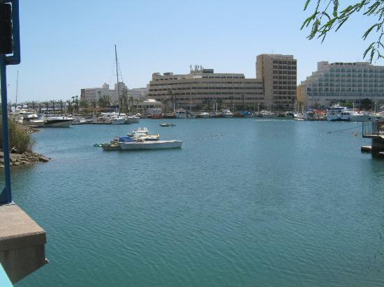 Leonardo Privilege Hotel Eilat : лагуна