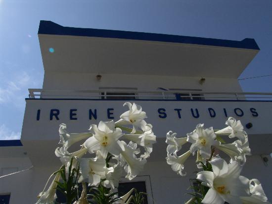 Irene Studios : Front side