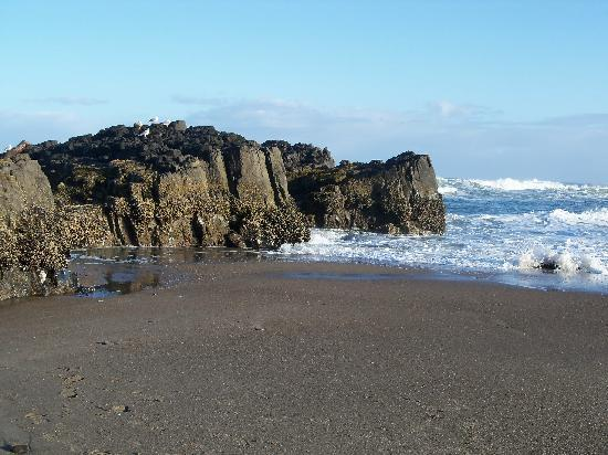 Inn At Spanish Head: See tidal pools at low tide