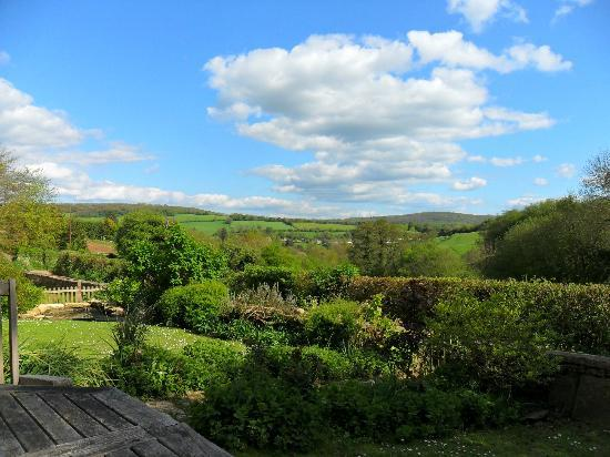 Ramscombe Cottage: view from terrace