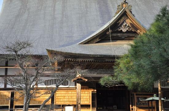 Chuson-ji Temple: Hondo