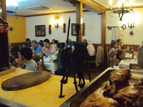 Restaurante El Gallo Pelon