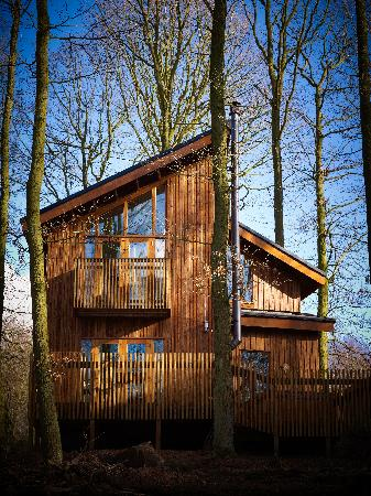 Edwinstowe, UK: One bedroom Cabin at Sherwood Forest Cabins