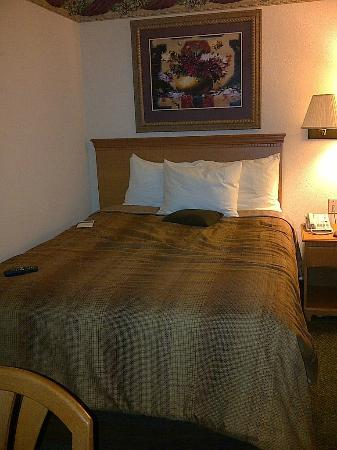 Candlewood Suites Tyler : Comfy Bed
