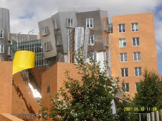 Stata Center : Go inside the building. this is the UNIversity.