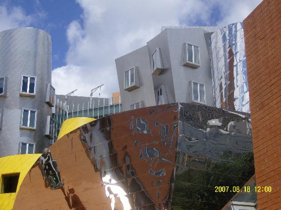 Stata Center : From the back stairs