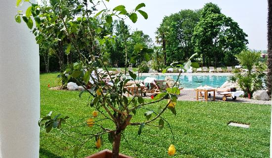 Montegrotto Terme, Italy: parco