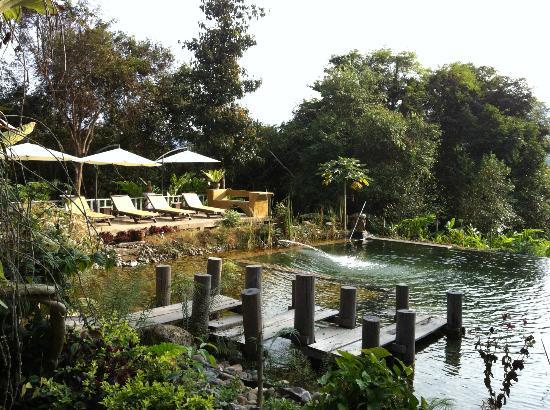 Zen Namkhan Boutique Resort: eco swimmingpool