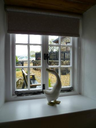 Hen Glyn: looking out to front garden