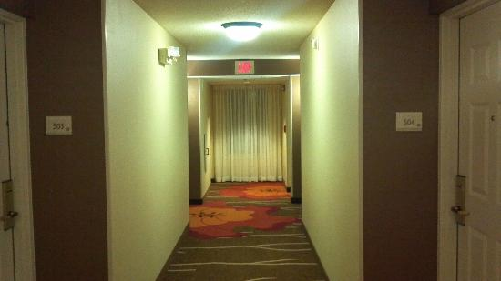 Hilton Garden Inn Hoffman Estates: Fifth Floor Hallway