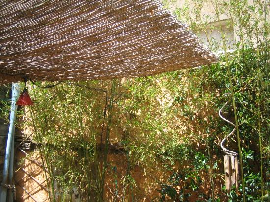 De Fleurus: Bamboos