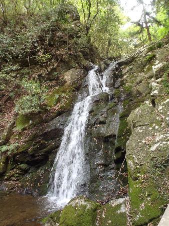 Settsu Gorge