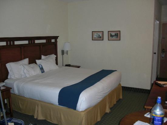 Holiday Inn Express San Jose Airport: King room
