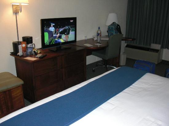 Holiday Inn Express San Jose Airport: TV in room