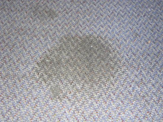 Hay Street Traveller's Inn: stain