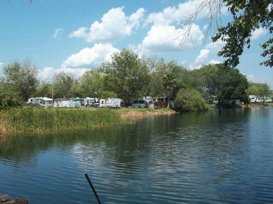 Sherwood Forest RV Park : Sherwood Forest Lake
