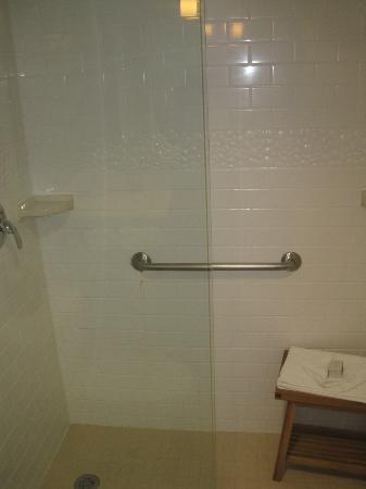 Hotel Indigo Basking Ridge : Shower