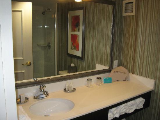 Hotel Indigo Basking Ridge : Bathroom