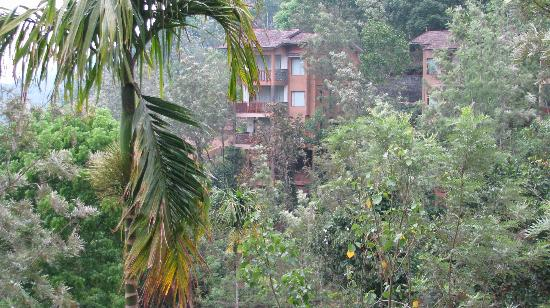 Thekkady Wild Corridor: view of other buildiings from our unit
