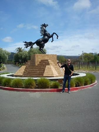 Black Stallion Winery: Out front