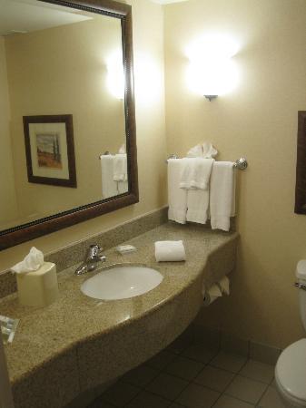 Hilton Garden Inn Gettysburg: Bathroom