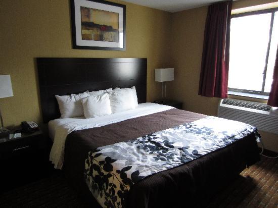 สลีป อินน์ บรู้คลิน ดาวน์ทาวน์: King size bed