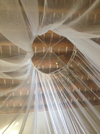 Todos Santos Inn: Net over the bed in room 1