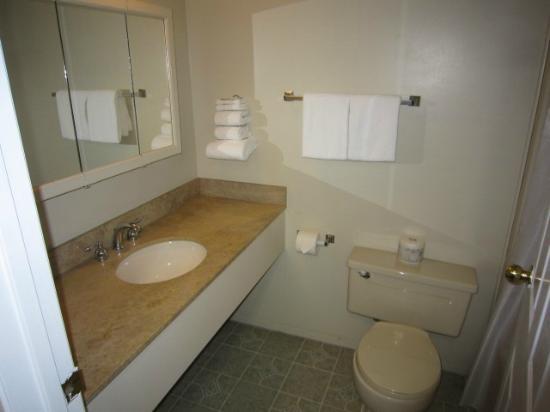 Riverland Inn & Suites: bathroom
