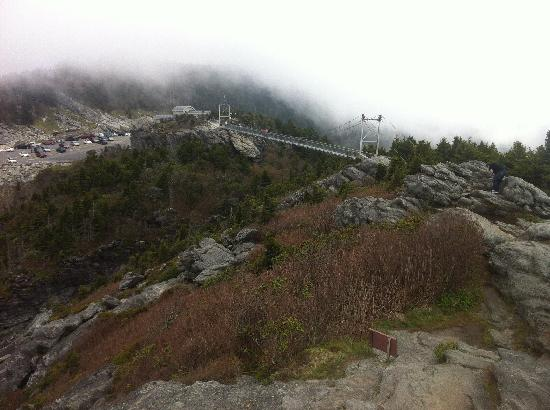 Banner Haven B&B and Cabin Rentals: Nearby Attraction - Grandfather Mountain