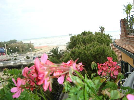 Hotel La Palazzina: vista panoramica dalla stanza dell'albergo