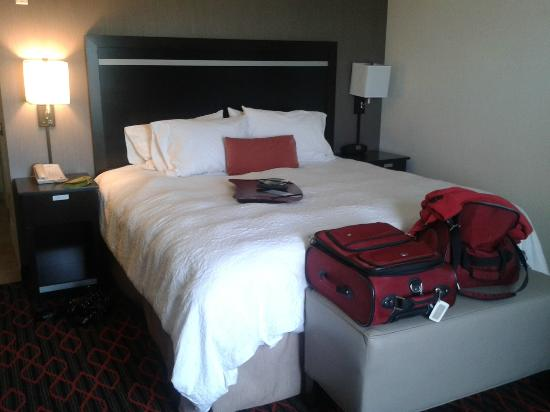 Hampton Inn & Suites by Hilton Red Deer : King Sized Bed