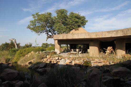 Sabi Sabi Earth Lodge: Middle of bush