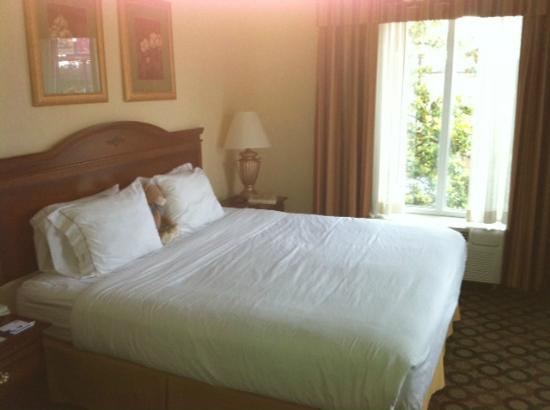 Holiday Inn Express Hotel & Suites Auburn: Bright Room