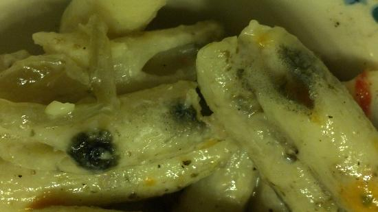 The Omni Homestead Resort: Moldy food close-up